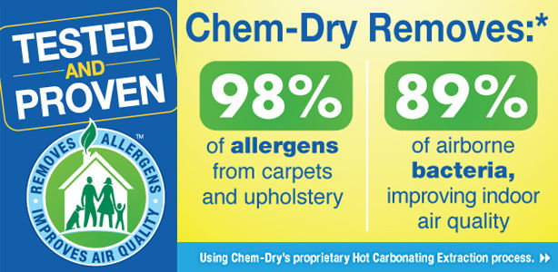 low allergen cleaning results