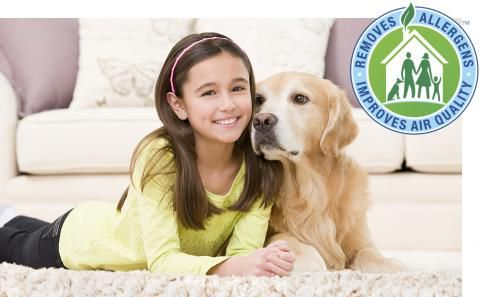 nontoxic carpet cleaning